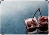 Обложка на автодокументы с уголками, вишня и лед