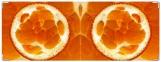 Обложка на зачетную книжку, апельсин