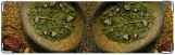 Визитница/Картхолдер, травяные часы