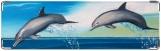 Визитница/Картхолдер, Дельфины (Акварель)