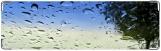 Визитница/Картхолдер, Дождь на стекле