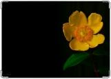 Обложка на паспорт с уголками, желтый цвет