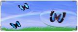 Кошелек, Бабочки в пузыре.