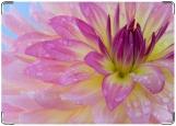 Обложка на паспорт с уголками, Нежный цветочек