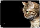 Обложка на паспорт с уголками, Кот.