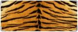 Обложка на студенческий, тигр2