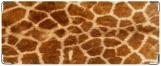 Обложка на студенческий, жираф