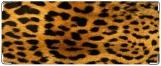 Обложка на студенческий, леопард