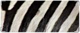 Обложка на студенческий, зебра2