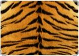 Обложка на автодокументы с уголками, тигр2