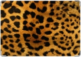 Обложка на автодокументы с уголками, леопард