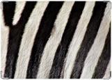 Обложка на автодокументы с уголками, зебра2