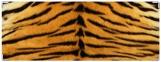 Обложка на зачетную книжку, тигр2