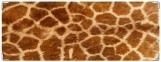 Обложка на зачетную книжку, жираф