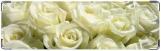 Визитница/Картхолдер, белые розы