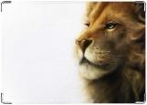 Обложка на автодокументы с уголками, царь зверей