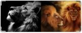 Кошелек, Львы