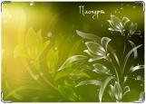Обложка на паспорт с уголками, Цветок солнца