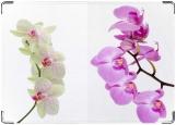 Обложка на паспорт, Орхидеи