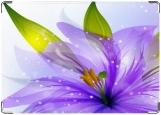 Обложка на паспорт с уголками, фиолет
