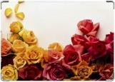 Обложка на права, В цветах