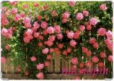 Обложка на паспорт с уголками, розы