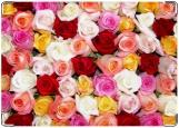 Обложка на автодокументы с уголками, Цветочки-розочки