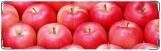 Визитница/Картхолдер, Наливное яблочко