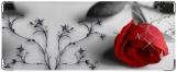 Обложка на студенческий, Роза