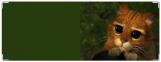 Обложка на зачетную книжку, Shrek