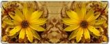 Кошелек, Желтый цветок