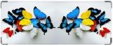 Кошелек, Бабочки