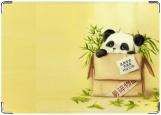 Обложка на паспорт с уголками, Панда