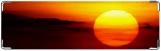 Визитница/Картхолдер, солнце