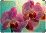 Обложка на паспорт с уголками, орхидеи