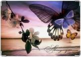 Обложка на автодокументы с уголками, Бабочка 2