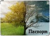 Обложка на паспорт с уголками, Летне-Зимний