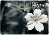 Обложка на паспорт с уголками, Цветик