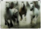 Обложка на автодокументы с уголками, лошади