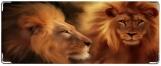 Кошелек, Король-лев
