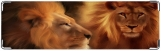 Визитница/Картхолдер, Lion King